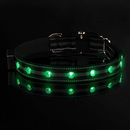 DOGNESS Collier Lumineux LED pour Chien 3 Modes d'éclairage, étanche, Violet, Bleu