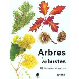 Arbres et arbustes par Vaclav Vetvicka