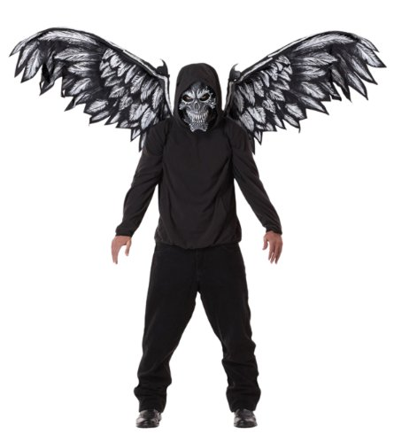 Four run angel mask and Wings Fallen Angel Mask and Wings (japan (Fallen Angel Wings)