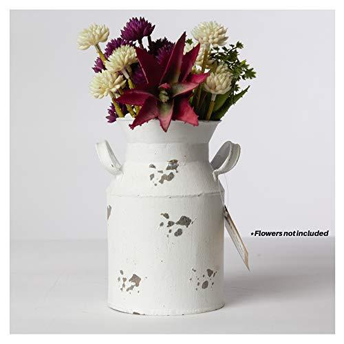 Harbor Gardens H12503WHT Milchkanne, 21 cm, altmodisch, Vintage, Weiß - Vintage Garden Vase