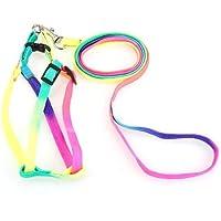 Correa 110cm Arnés Cinturón Nylón Multicolor para Perrito Mascota Gato