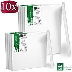 Idea Regalo - Artina Set da 10 Tele per Pittura 5x 30x40 cm & 5x 20x20 cm Serie Akademie - 100% Cotone Bianco 280g/m² - Telaio in Legno Certificato FSC - non si deforma
