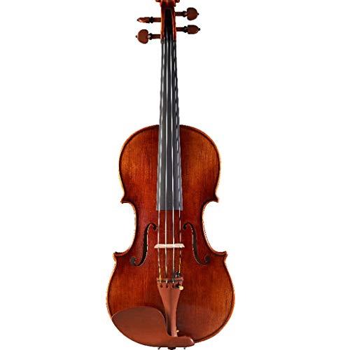 Violini Strumenti a Corda solista Importato Acero Livello Professionale Strumento a Corde Fatto a Mano Acustico Accessori Completi (Color : 4/4)