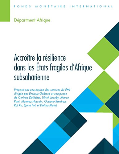 Building Resilience in Sub-Saharan Africa's Fragile States (Departmental Papers) par Enrique Gelbard