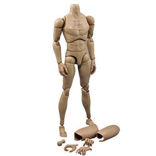 Preisvergleich Produktbild Schmale Schulter Maßstab 1/6 12 Zoll Male Nude Aktion Abbildung Körper für TTM19