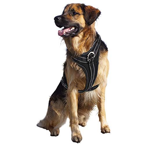 PetCay Gepolstertes Hundegeschirr | Brust-Geschirr Einstellbar aus Nylon & Kunstleder | Reflektierend, Weich & Atmungsaktiv | Schwarz