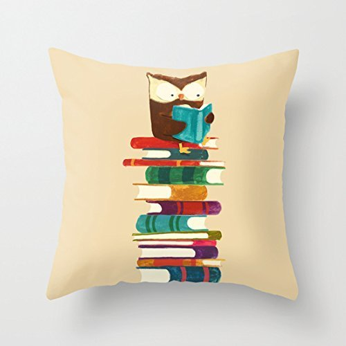 GONIESA Owl Reading Rainbow Cute Throw Pillow Covers Accent Pillows Pillow Covers for Teens Cushion Covers 18x18 Inch/45cmx45cm