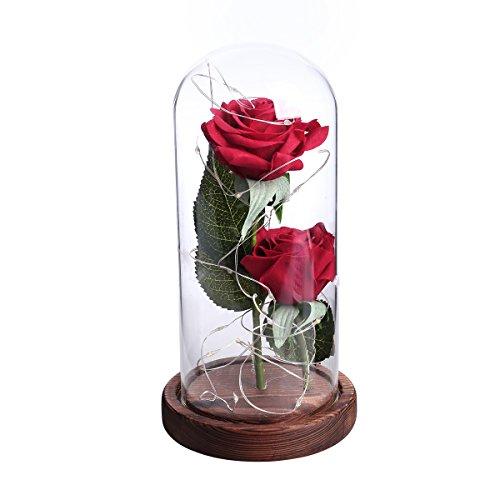 LEDMOMO Rote Seide Rose und LED-Licht mit gefallenen Blütenblättern in einer Glaskuppel auf einer hölzernen Basis Geschenk zum Valentinstag Jubiläum Geburtstag Hochzeit (zwei Rose) (Rose Herzstück Rote)