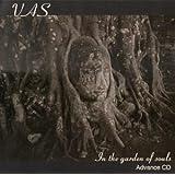 In the Garden of Souls