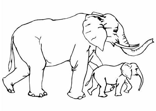 Wandtattooladen Wandtattoo - Elefanten Größe:65x37cm Farbe: Schablone