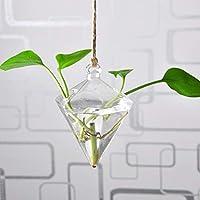 Amazon It Lanterne Grandi Vasi Decorazioni Per Interni Casa E Cucina