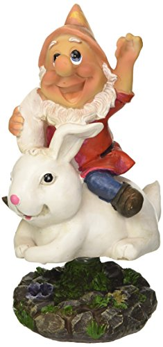 Gnome Garden (edco 871125295804Wackeln und Animal Garden Gnome–Mehrfarbig)