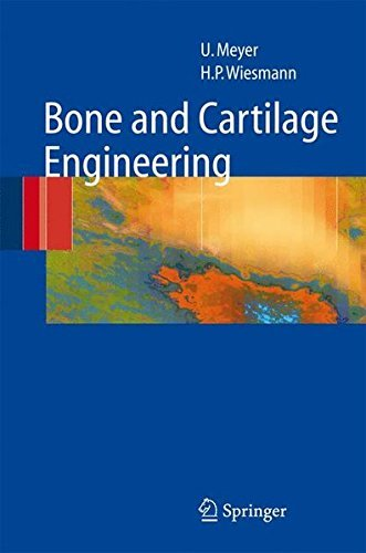 bone-and-cartilage-engineering-by-ulrich-meyer-2006-04-11
