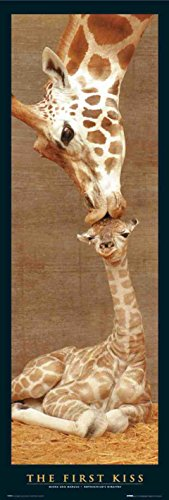 First Kiss-Giraffa-30,5x 91,25cm mostra/Poster