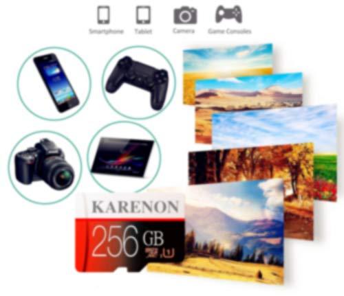 Karenon - Scheda Micro SD da 256 GB, microSDXC 256 GB, classe 10, con adattatore (F135-SD) (256GB)
