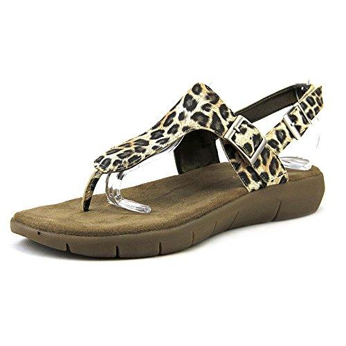 aerosoles-wip-stop-femmes-us-9-noir-sandale