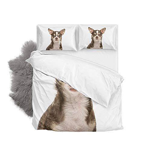 Orediy Bettwäsche-Set, Chihuahua-Hund, Bettbezug mit Kissenbezug, 2-teiliges Set, Einzel-/Doppelbett, 168 x 228 cm, Polyester, Single/Twin (Bettwäsche Hund Twin)