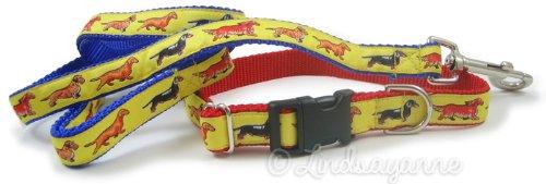 Dackel Hund Rasse Hund Halsband und Leine Set, Standard, Gelb -