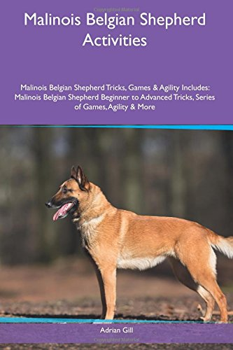 Malinois Belgian Shepherd Activities