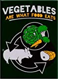 SNORGS, Vegetables Are What Food Eats, Officially Licensed, 3.5' x 2.5' MAGNET magnete