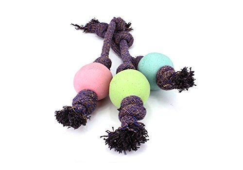 Beco Ball on Rope – Natural Rubber Ball and Cotton Rope Tug and Chew Toy for Dogs – S – Blue
