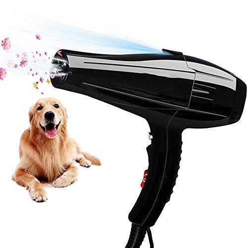 Haustier Hund Haartrockner Professionelle Hundesalon Haar, Low Noise Blaster Trockner Für Große Und Kleine Tiere (Super Cyclone),Schwarz