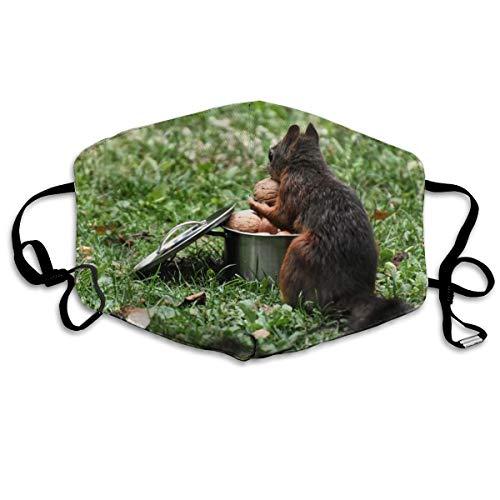 Wrution Pot Kochtopf Nüsse Eichhörnchen süße Walnüsse Baumwolle Gesicht Mundmaske Atmungsmaske bequem wiederverwendbar für Männer und Frauen