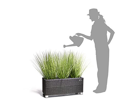 Gartenfreude Pflanzkübel, Raumteiler, Polyrattan für Innen und Außen ...