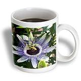 3dRose Flower Passion Flower Ceramic Mug, 15-Ounce