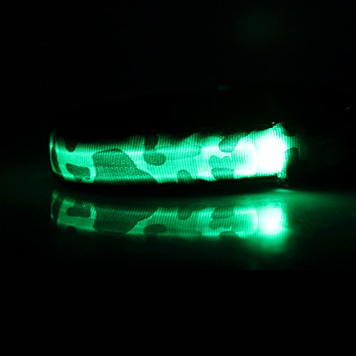 "PRECORN Collar de Perros Luminoso Collar LED parpadear""Militar"" Tamaño M (40-50 cm) para Perros"