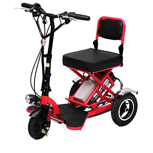 Hebbp1 Triciclo Eléctrico De Tres Ruedas Plegable, Portátil para Ancianos, Bicicleta Eléctrica, Batería De Litio De 48 V (Puede Soportar 150 kg)