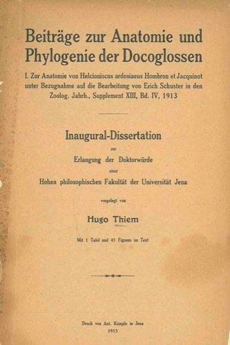 Beitrage zur Anatomie und Phylogenie der Docoglossen. par THIEM Hugo -