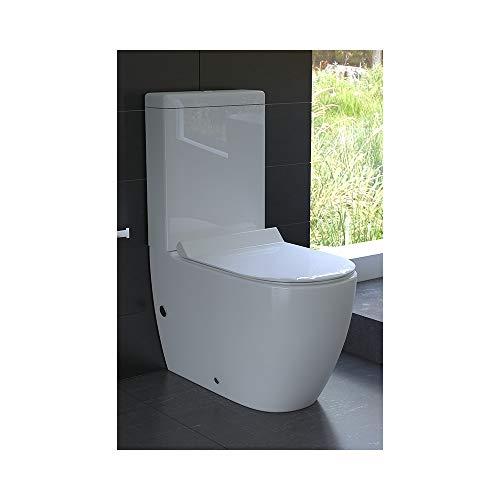 Design Stand-WC aus Keramik mit Spülkasten mit GEBERIT-Spülgarnitur und Duroplast WC-Sitz mit Soft-Close-Funktion