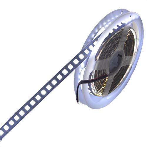 JOYLIT Tiras LED Iluminación CC 12V Blanco frío 6000-6500K 600 LEDs SMD5054 5 metros IP20 No impermeable