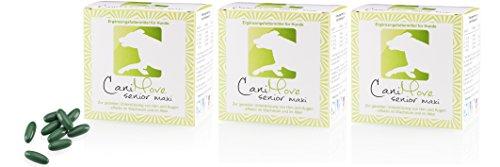 CaniMove Dreier-Pack (3 x 100 Kapseln) Senior Maxi - tierärztliches Ergänzungsfutter für eine gezielte Unterstützung von Augen und Gehirn -