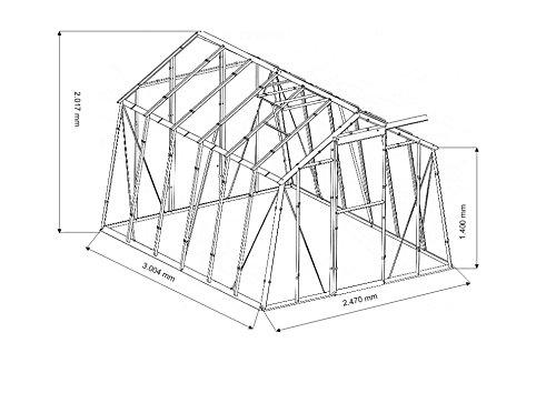 myowngreen Gewächshaus Hobby L Typ 3 Größe 247 x 300 x 202 cm (B x L x H) = 7,40 m²