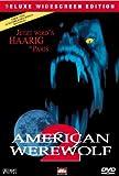 American Werewolf kostenlos online stream