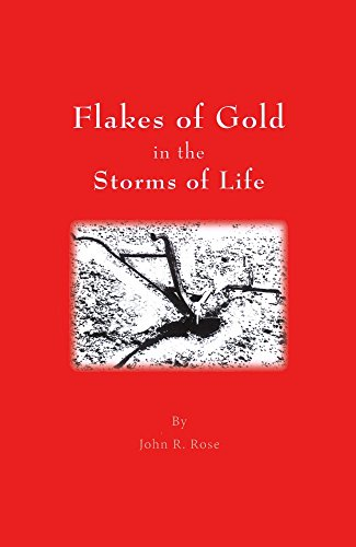 flakes-of-gold-in-the-storm-of-life-english-edition