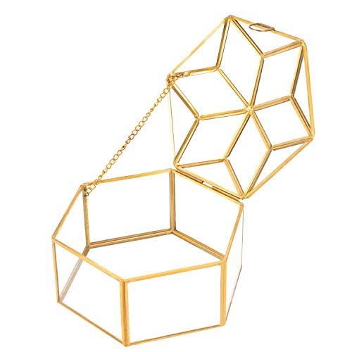 QILICZ Glas Terrarium,Dekor Glas Pflanzenbehälter Schmuckschatulle Blumen Topf Sukkulente Pflanzgefäß Deko Tischplatten Pflanzer - Geometrisch Hexagon Form Glas Box