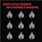 Inflammable Material [Vinyl LP]