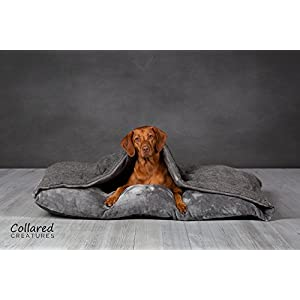 Collared Creatures Dog Snuggle Bed, Snuggle Sack, Grey