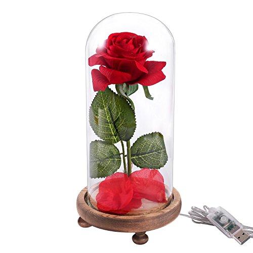 Kit rose la bella e la bestia, idea regalo per la festa del papà, rosa rossa di seta e luce a led con petali caduti in cupola di vetro su una base di legno