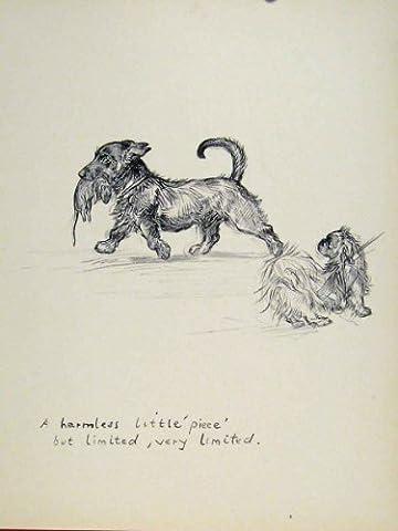 Pet Animal Dog Hound Rat Mice Hunt Sketch Print Old