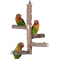 مجثم من الخشب الطبيعي للطيور للعب والمرح لأقفاص الببغاوات الصغيرة ومتوسطة الحجم من انتول