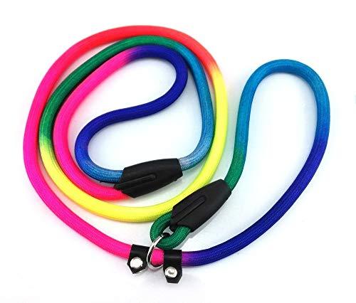 ToomLight Rainbow Haustier Hund Nylon Leine Einstellbare Schleife Slip Führstrick für Geschirre Welpen Trainingsgürtel