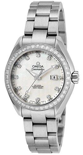 Omega Seamaster Aqua Terra 231.15.34.20.55.001 Steel Automatic Men's Watch