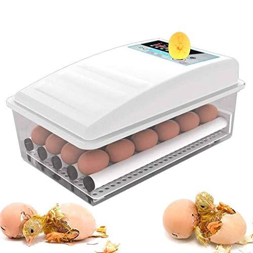 WISKEO Beleuchtung Ei Inkubator, Brutmaschine Temperaturregulierung, Brutschrank Automatische Wendung Eier, Brutkasten Brutapparat Flächenbrüter, Ausbrüten Hühner Ente Gänseeier 24 Eier