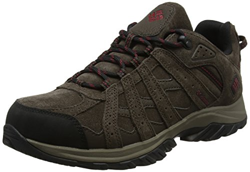 COLUMBIA Herren Wanderschuhe, Wasserdicht, CANYON POINT LEATHER OMNI-TECH, Cordovan (Braun, Red Element), 41 1/2