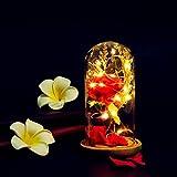 Wowdecor Beauty And The Beast Lámpara de flor de rosas encantada, diseño de flores rojas para siempre con pétalos de luz LED en cúpula de cristal sobre base de madera, regalo perfecto para el día de San Valentín, aniversario de boda, cumpleaños, Navidad