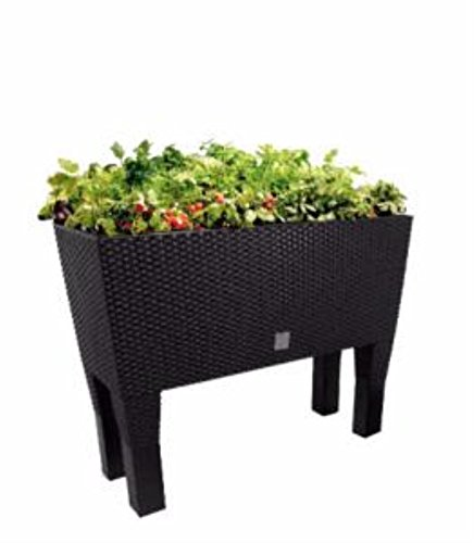Mesa de cultivo para huerto urbano